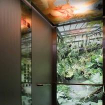Instalacion-de-ascensores-1